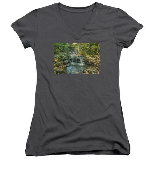 Women's V-Neck T-Shirt (Junior Cut) featuring the photograph Vaughan Woods Stream by Jane Luxton