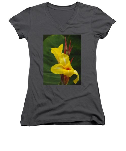 Velvety Yellow Iris  Women's V-Neck (Athletic Fit)