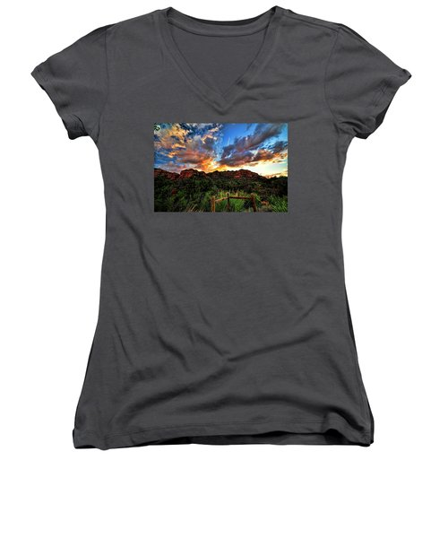 View From The Fence  Women's V-Neck T-Shirt
