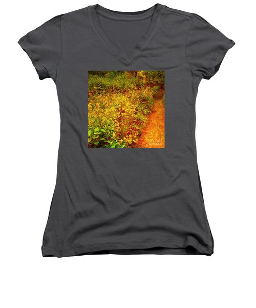 Women's V-Neck T-Shirt (Junior Cut) featuring the photograph Vintage Garden Path by Terri Gostola