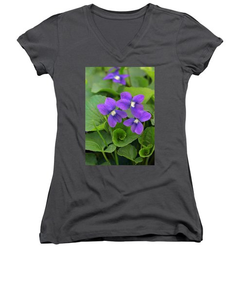 Violet Trio Women's V-Neck T-Shirt