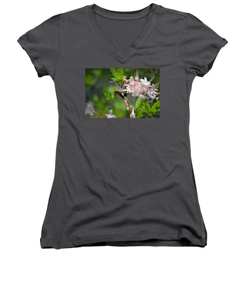 Women's V-Neck T-Shirt (Junior Cut) featuring the photograph Visitor by Tara Potts