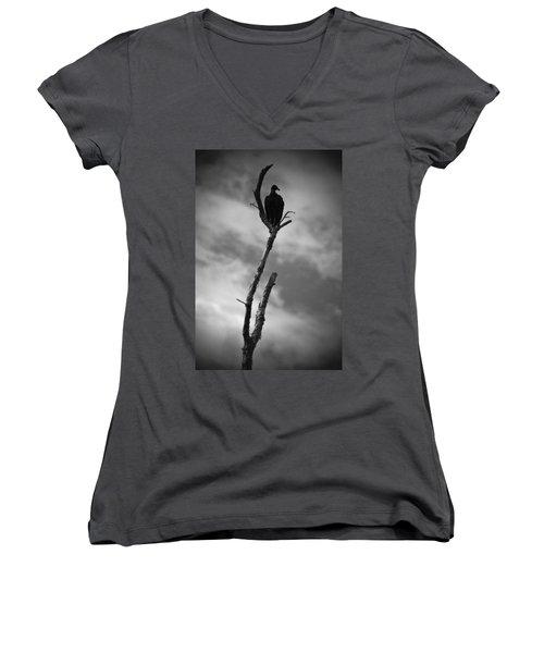 Vulture Silhouette Women's V-Neck (Athletic Fit)