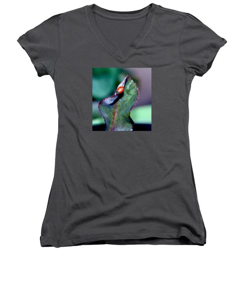 Walking The Thorny Edge Women's V-Neck T-Shirt
