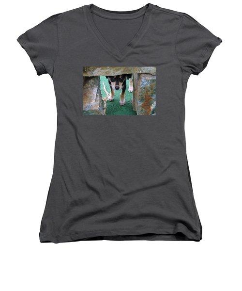 Wannabe Sled Dog In The Yukon Women's V-Neck T-Shirt