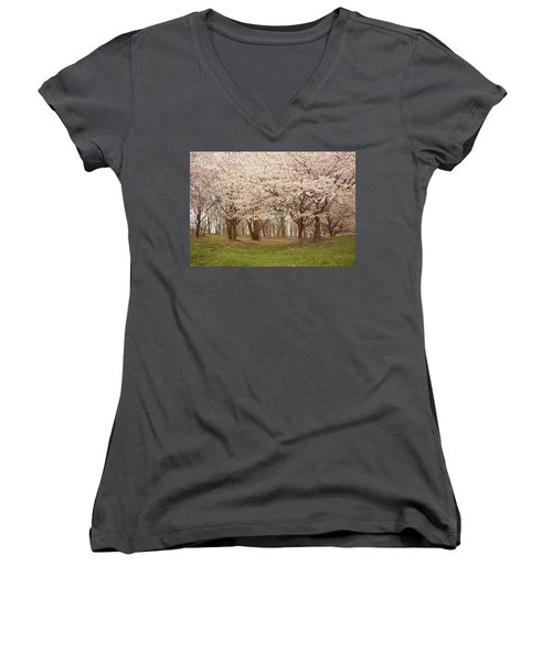 Washington Dc Cherry Blossoms Women's V-Neck