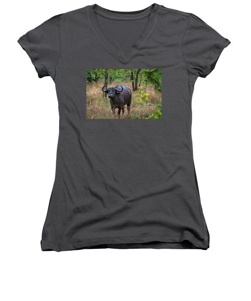 Water Buffalo Women's V-Neck (Athletic Fit)