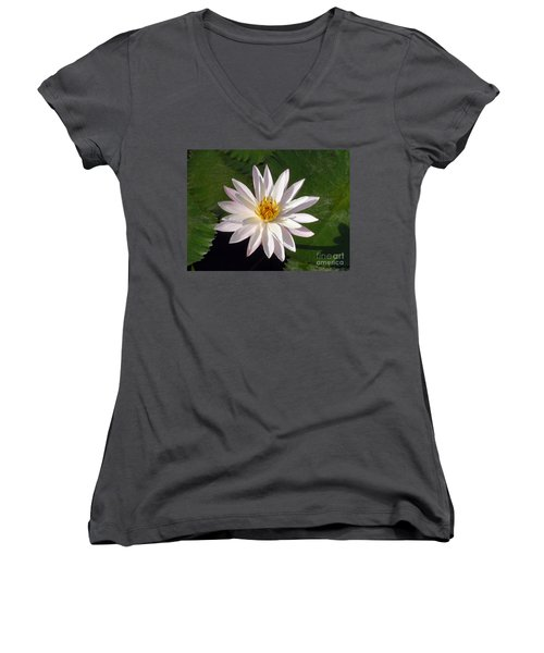 Water Lily Women's V-Neck T-Shirt (Junior Cut) by Sergey Lukashin