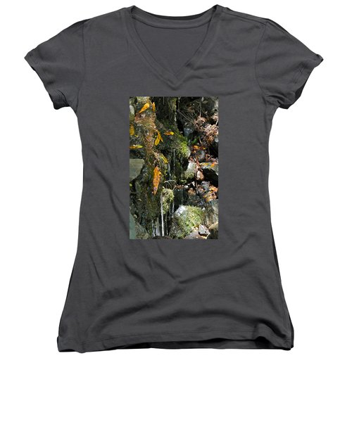 Women's V-Neck T-Shirt (Junior Cut) featuring the photograph Water Of Life by Michele Myers