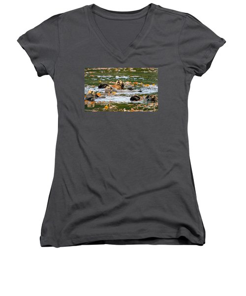 We Otter Be In Pictures Women's V-Neck T-Shirt (Junior Cut) by Bob Hislop