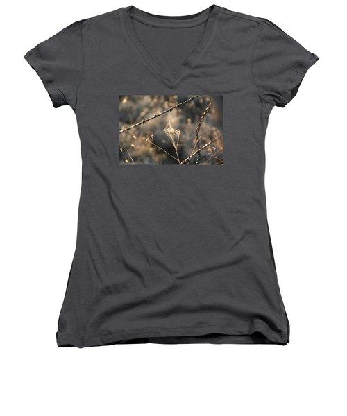 Women's V-Neck T-Shirt (Junior Cut) featuring the photograph web by David S Reynolds