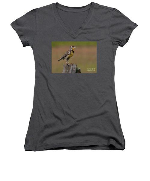 Western Meadowlark.. Women's V-Neck