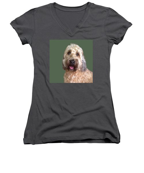 Wheaton Terrier Women's V-Neck (Athletic Fit)