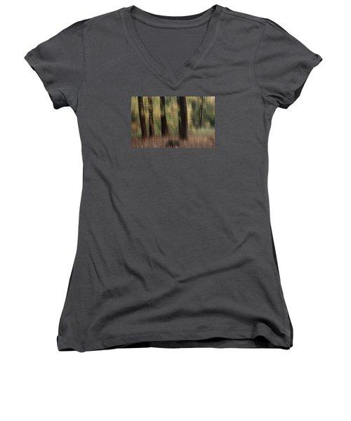 Where Faeries Play Women's V-Neck T-Shirt