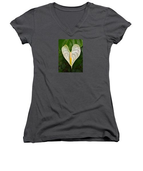 White Anthurium Heart Women's V-Neck T-Shirt (Junior Cut) by Venetia Featherstone-Witty
