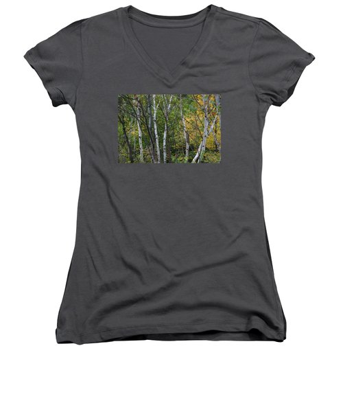 Women's V-Neck T-Shirt (Junior Cut) featuring the photograph White Birches In The Woods by Denyse Duhaime