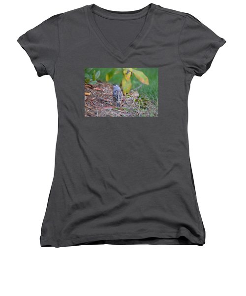 White-crowned Sparrow Women's V-Neck T-Shirt