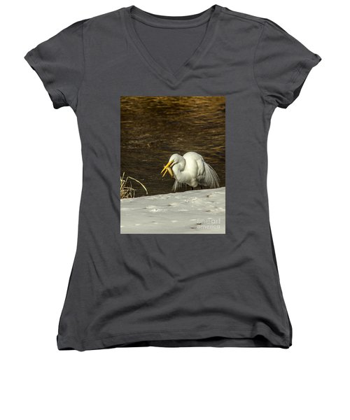 White Egret Snowy Bank Women's V-Neck T-Shirt (Junior Cut) by Robert Frederick