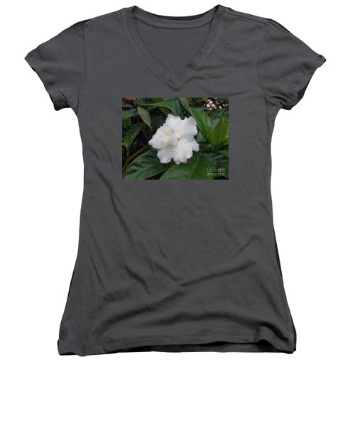 Women's V-Neck T-Shirt (Junior Cut) featuring the photograph White Flower by Sergey Lukashin