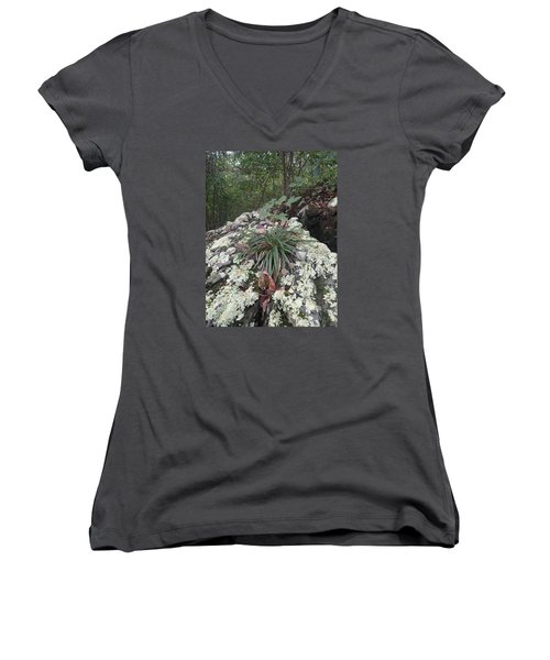 Women's V-Neck T-Shirt (Junior Cut) featuring the photograph White Lichen by Robert Nickologianis