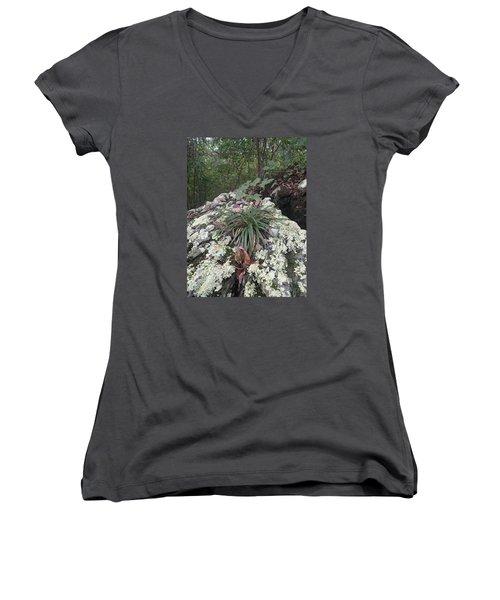 White Lichen Women's V-Neck T-Shirt (Junior Cut) by Robert Nickologianis