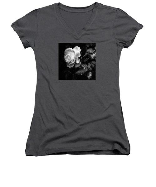 White Rose Full Bloom Women's V-Neck T-Shirt (Junior Cut) by Darryl Dalton