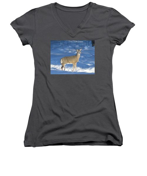 Women's V-Neck T-Shirt (Junior Cut) featuring the photograph White Tail Deer by Brenda Brown