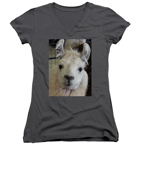 Women's V-Neck T-Shirt (Junior Cut) featuring the photograph Who Me Llama by Caryl J Bohn