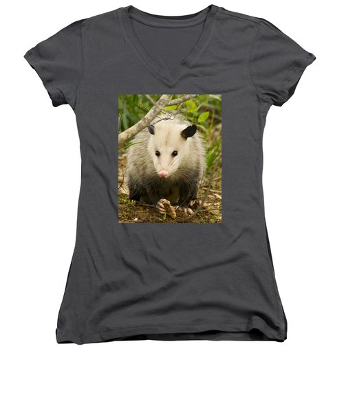 Who Says Possums Are Ugly Women's V-Neck T-Shirt (Junior Cut) by Kathy Clark