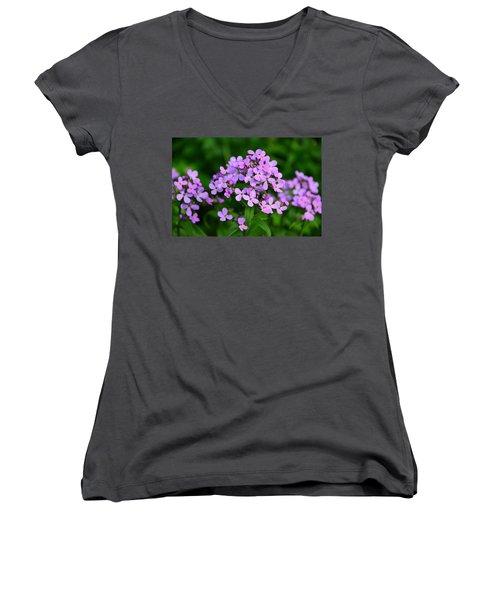 Women's V-Neck T-Shirt (Junior Cut) featuring the photograph Wild Phlox by Debra Martz