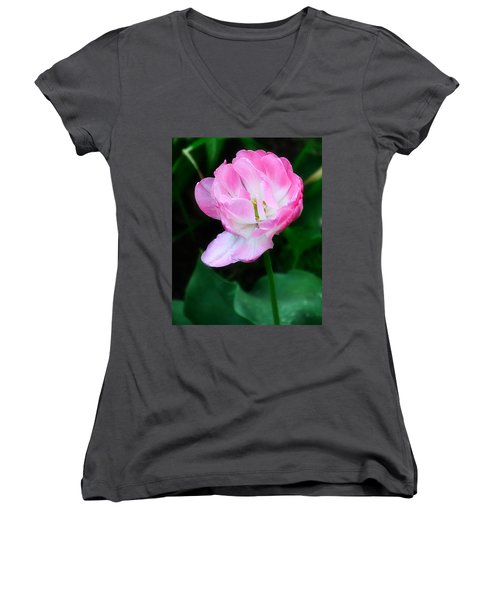 Wild Pink Rose Women's V-Neck T-Shirt