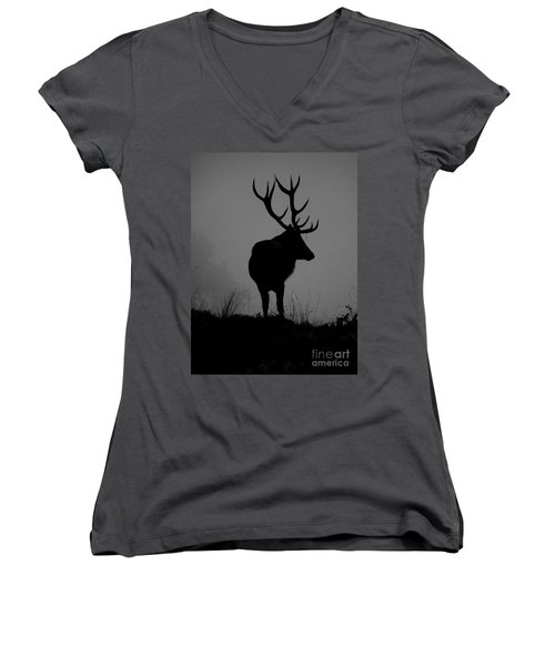 Wildlife Monarch Of The Park Women's V-Neck (Athletic Fit)