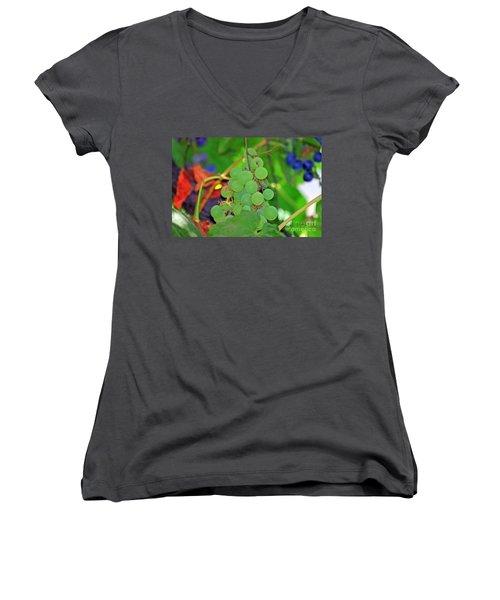 Wine Beginnings Women's V-Neck T-Shirt (Junior Cut)