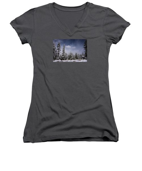 Winter Again Women's V-Neck T-Shirt (Junior Cut) by Janis Knight