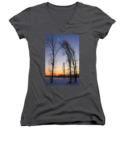 Winter At Dusk Women's V-Neck T-Shirt