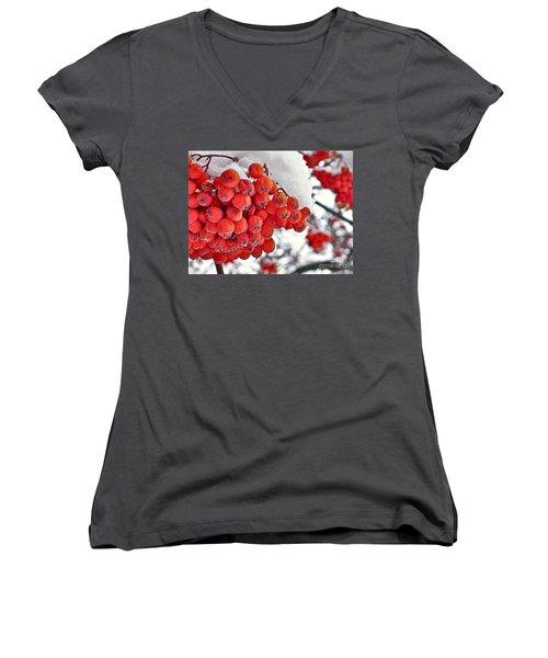 Winter Berries Women's V-Neck T-Shirt