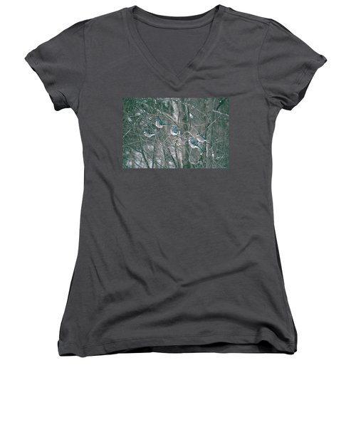 Winter Conference Women's V-Neck T-Shirt (Junior Cut) by David Porteus