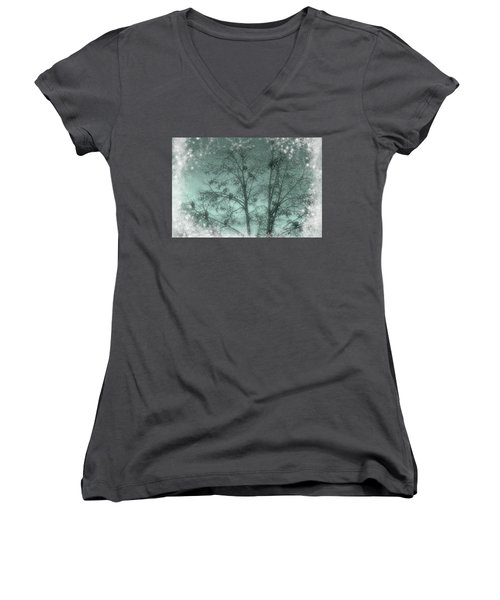 Winter Doves Women's V-Neck T-Shirt