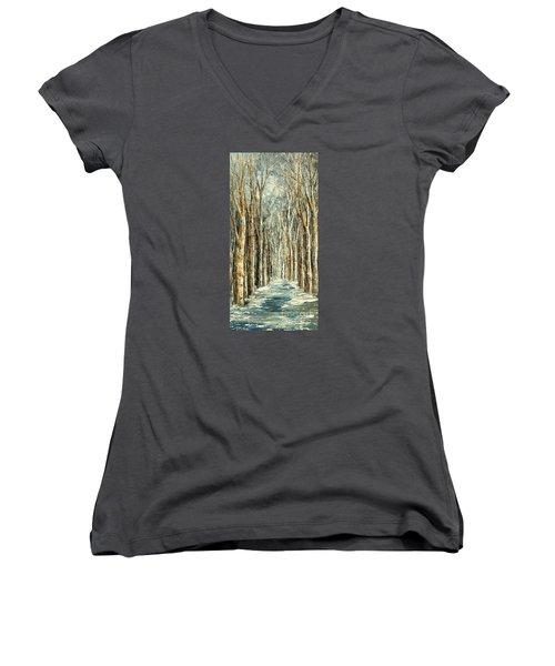 Winter Dreams Women's V-Neck T-Shirt