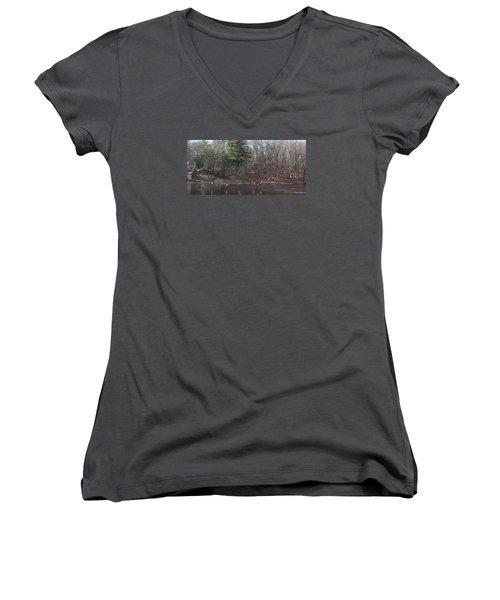 Women's V-Neck T-Shirt (Junior Cut) featuring the photograph Winter Flight by Debra     Vatalaro