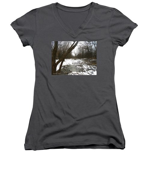 Winter Forest Series Women's V-Neck (Athletic Fit)