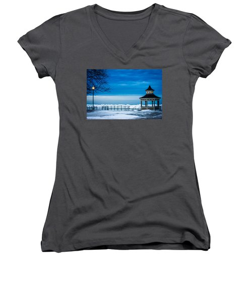 Winter Rhapsody Women's V-Neck T-Shirt