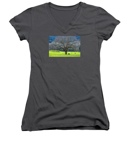 Winter Tree With Cows By The Umpqua River Women's V-Neck T-Shirt (Junior Cut) by Michele Avanti
