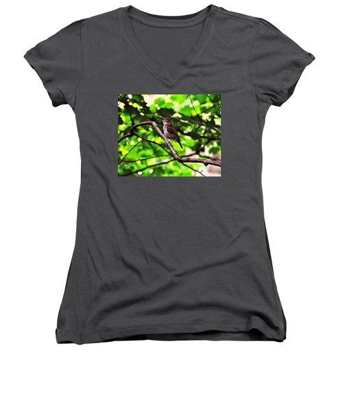 Wood Thrush Singing Women's V-Neck T-Shirt (Junior Cut) by Chris Flees