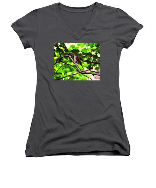Wood Thrush Singing Women's V-Neck (Athletic Fit)