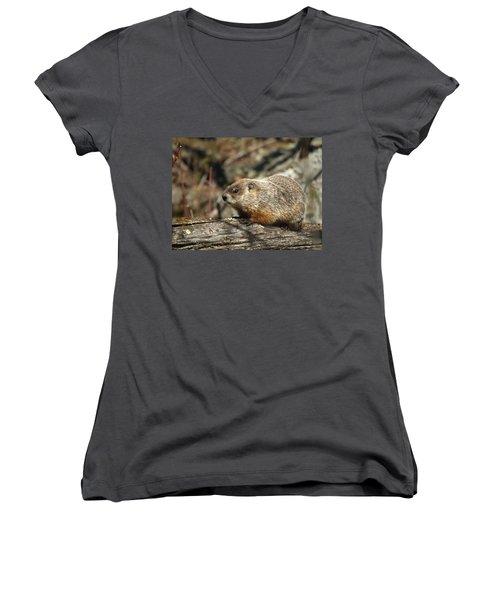 Women's V-Neck T-Shirt (Junior Cut) featuring the photograph Woodchuck by James Peterson