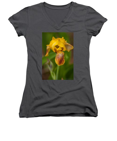 Yellow Bearded Iris Women's V-Neck T-Shirt