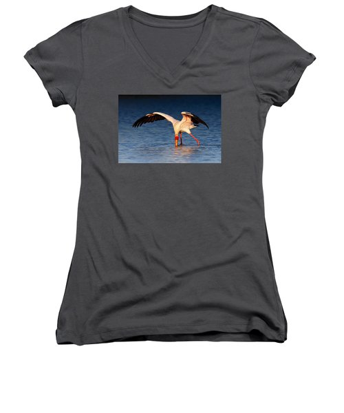 Yellow-billed Stork Hunting For Food Women's V-Neck (Athletic Fit)