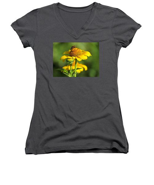 Yellow Daisy Women's V-Neck T-Shirt
