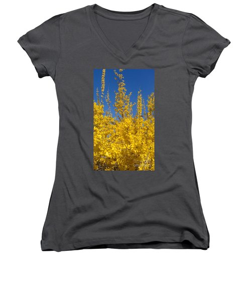 Yellow Explosion Women's V-Neck T-Shirt (Junior Cut) by Melissa Petrey